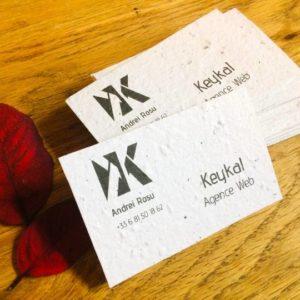 image des cartes de visite avec des feuilles rouges