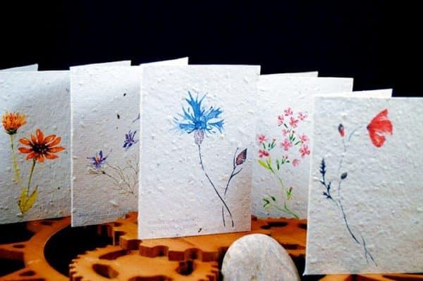 Ensemble cartes aquarelle